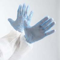 Gant vinyle bleu talqué taille S 6/7  230x85mm